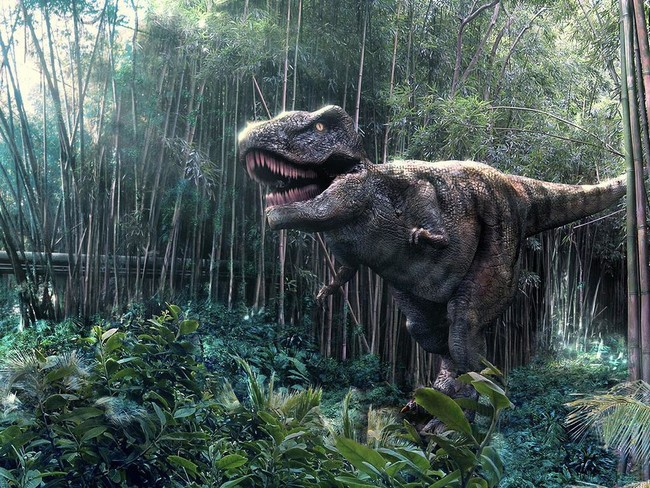 Parque Jurasico Dino A Park 3