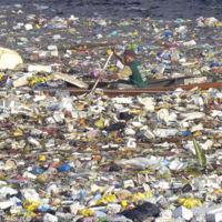 Científicos japoneses descubrieron un nuevo tipo de bacteria que puede comerse el plástico