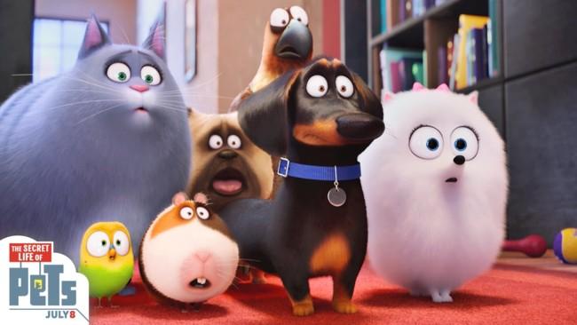 Mascotas (The Secret Life Of Pets)