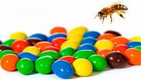 Después de comer M&M's, las abejas producen miel de colores