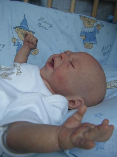 Muñecos de bebés muy reales