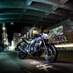 Foto 15 de 18 de la galería yamaha-mt-03-1 en Motorpasion Moto