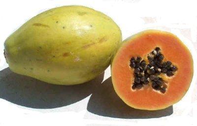 Papaya, la fruta del árbol de la buena salud
