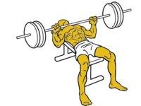 Musculación para corredores (VI): press de banca