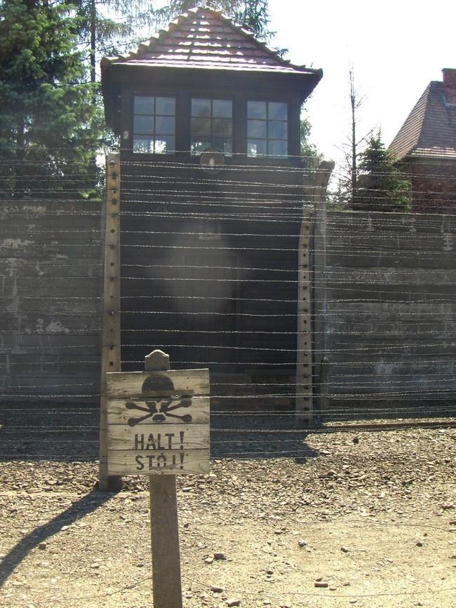 Foto de Auschwitz (1/8)