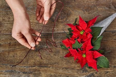 2015 Poinsettia Diy Decoracion Para Silla 04 Es