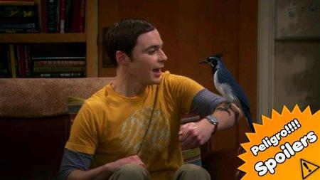 'The Big Bang Theory' aburre con sus parejas