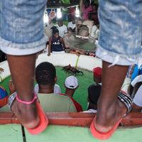 'Plumas, sangre y dinero', de Bayoan Freites, documentando la lidia de gallos en la República Dominicana