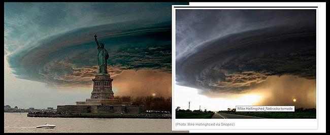 Sandy fake