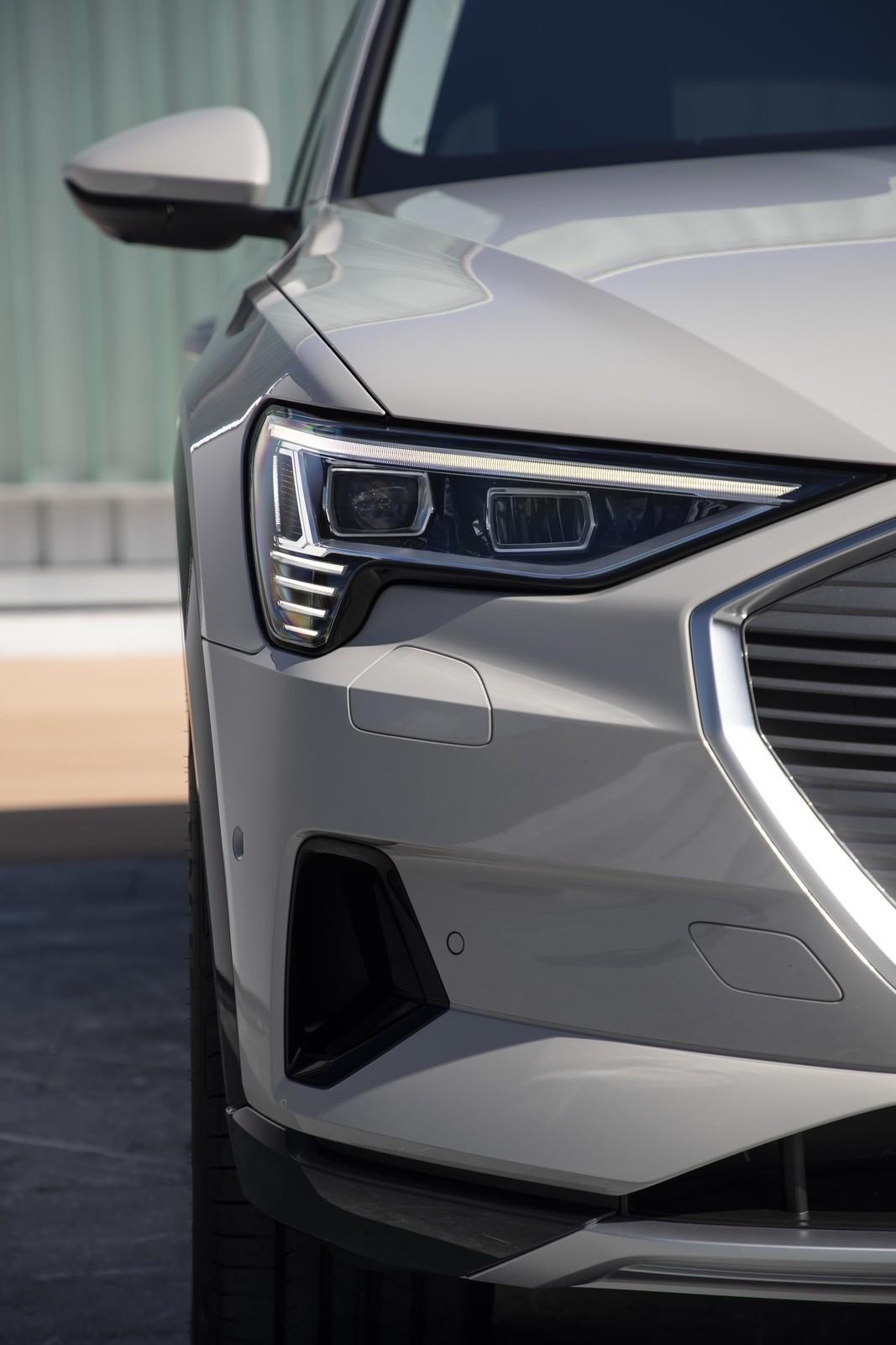 Foto de Audi e-tron (39/111)