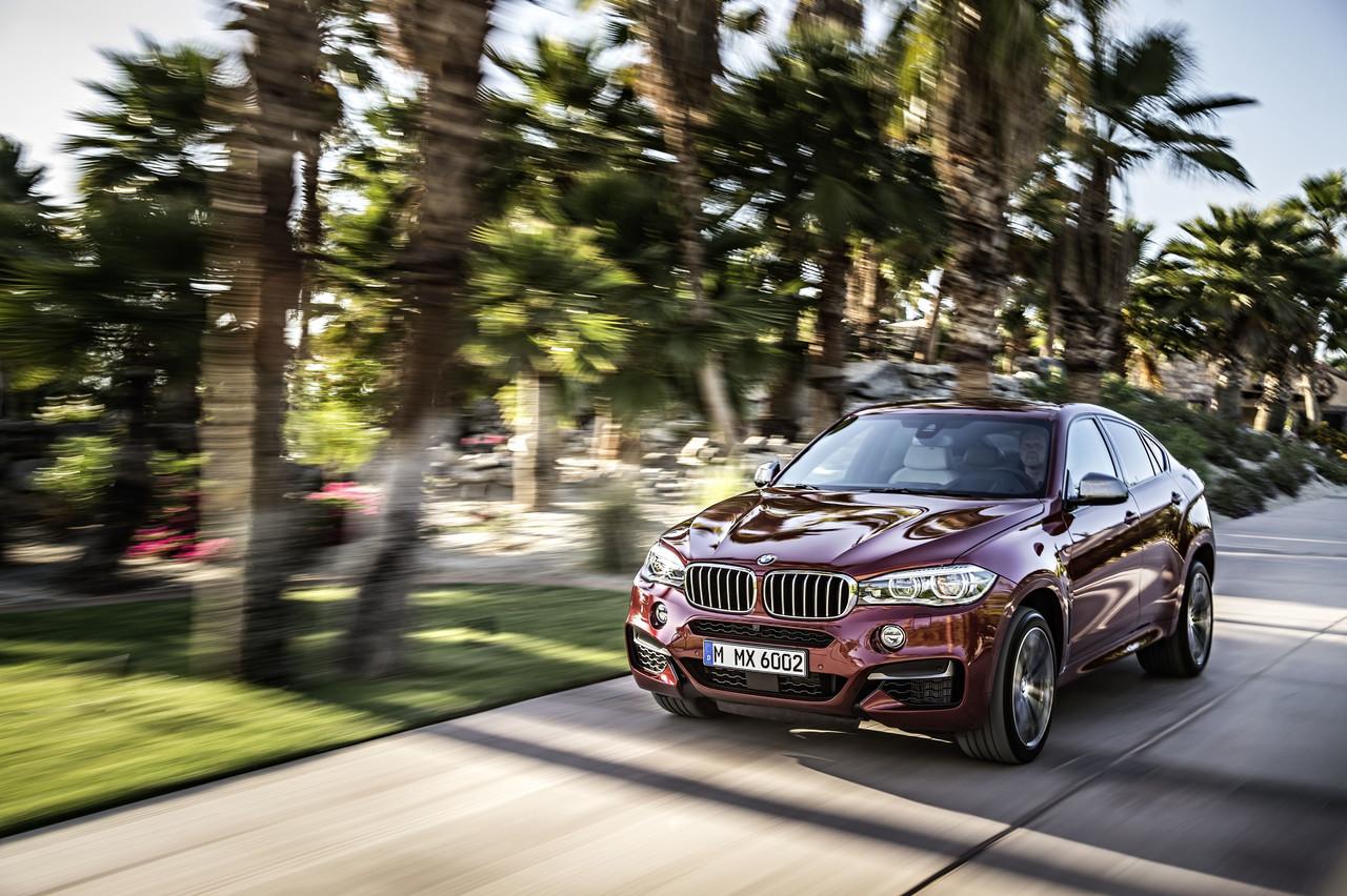 Foto de BMW X6 2014 (38/96)