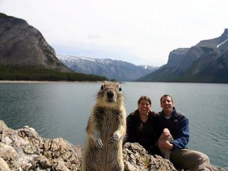 Desde Alaska, con una amiga nueva