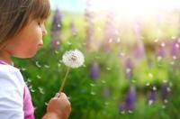 Diez ideas más para que vuestros hijos aprendan en vacaciones