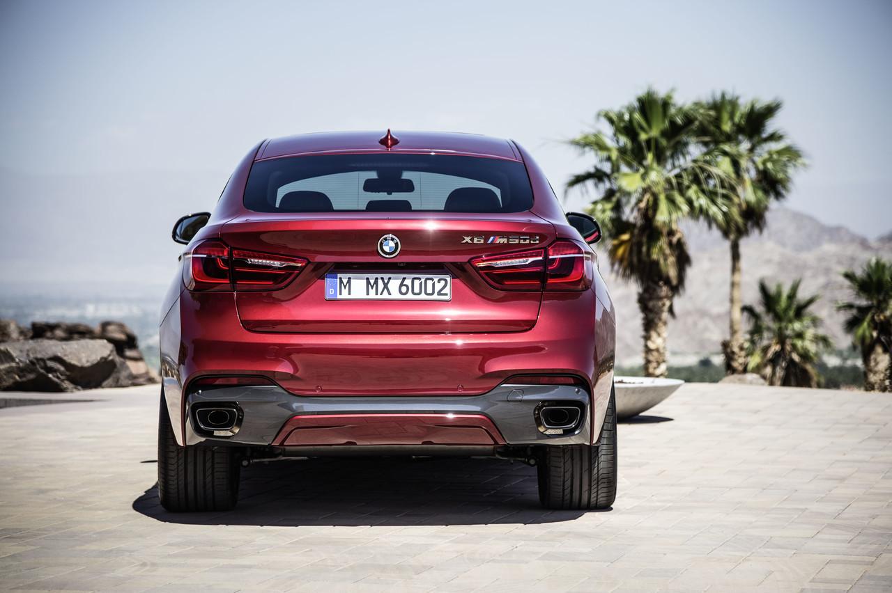 Foto de BMW X6 2014 (9/96)