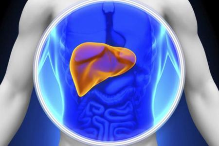 Hígado graso, ¿qué es y cómo prevenirlo?