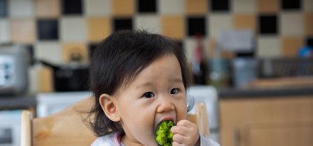 La introducción tardía de alimentos en la dieta del bebé podría predisponer a desarrollar alergias alimentarias
