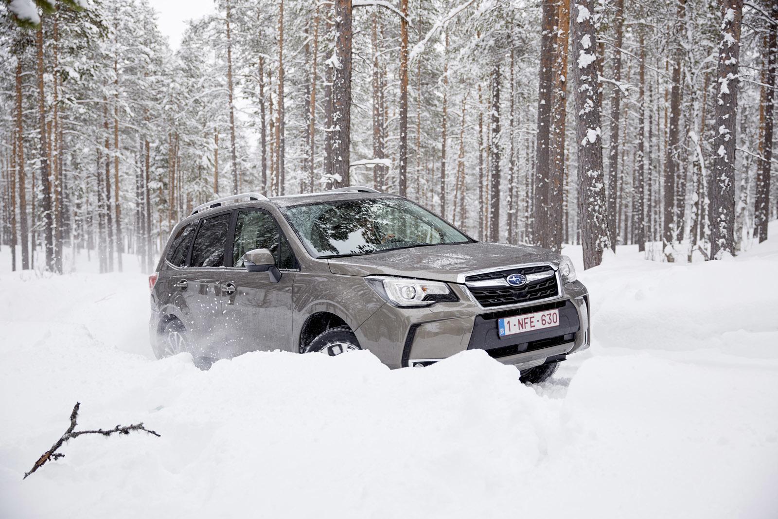 Foto de Subaru Snow Drive 2016 (7/137)
