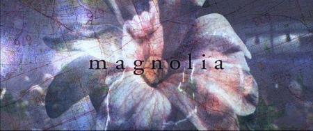 magnolia55669.jpg