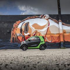 Foto 240 de 313 de la galería smart-fortwo-electric-drive-toma-de-contacto en Motorpasión