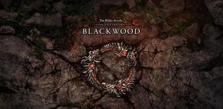 The Elder Scrolls Online detalla su hoja de ruta para 2021, con las expansiones Blackwood y Flames of Ambition