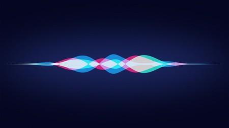 Siri 0 0dda070bf1db013716eeccf51738f47e Xl