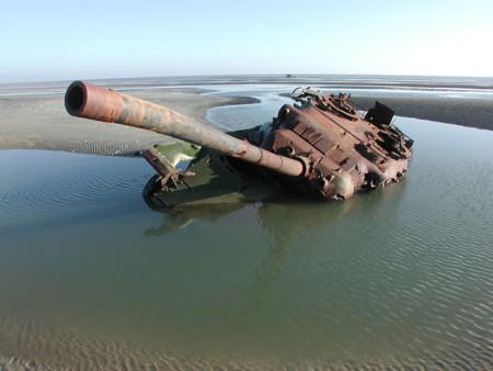 Tanques Naturaleza 8