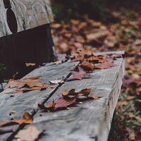 Noviembre negro para los autónomos: toque de queda, devolución de impuestos y segundo plazo del IRPF