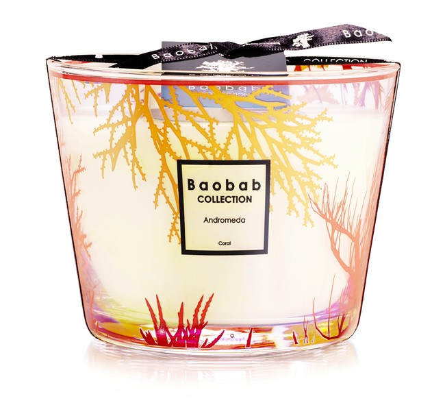 Baobab Collection Coral Trilogy Andromeda Max 10 79eur