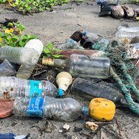 Esta web te ofrece guías para utilizar menos plástico en tu día a día