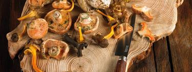 Las 10 setas de otoño e invierno más importantes de España: dónde recogerlas, cómo cocinarlas y con qué variedades no debes confundirlas
