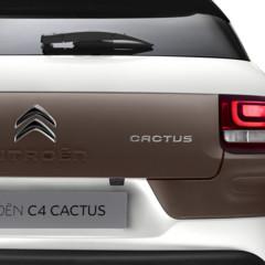 Foto 5 de 85 de la galería citroen-c4-cactus en Motorpasión