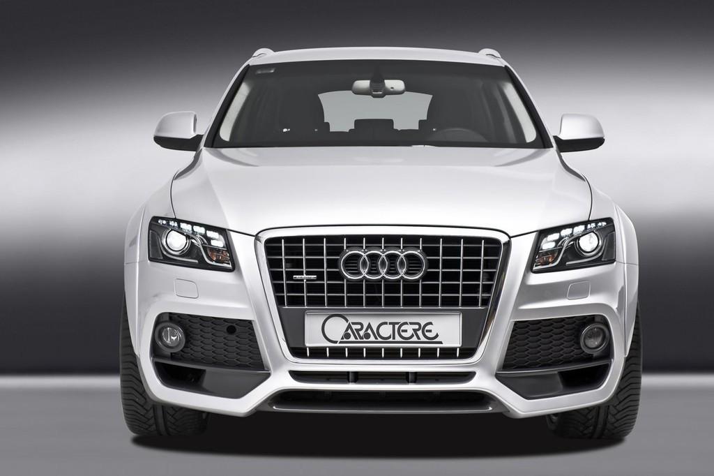 Foto de Audi Q5 Caractere (3/12)