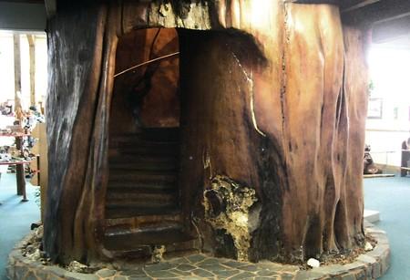 Fabricando muebles con madera miles de años de antigüedad
