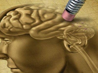 Literatura contra el olvido en el Día mundial del Alzheimer