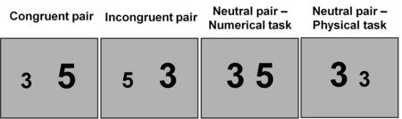 Examples Of The Numerical Stroop Effect Trials