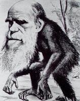 Los británicos dudan de Darwin