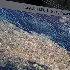 Foto 7 de 25 de la galería sony-crystal-led en Xataka