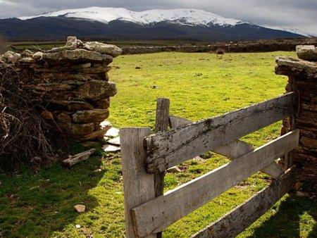"""Luis Cobos: """"Se le pueden poner puertas al campo y se las vamos a poner"""""""
