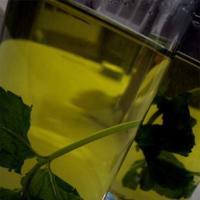 Alimentos que elevan tu metabolismo (VI): el té verde