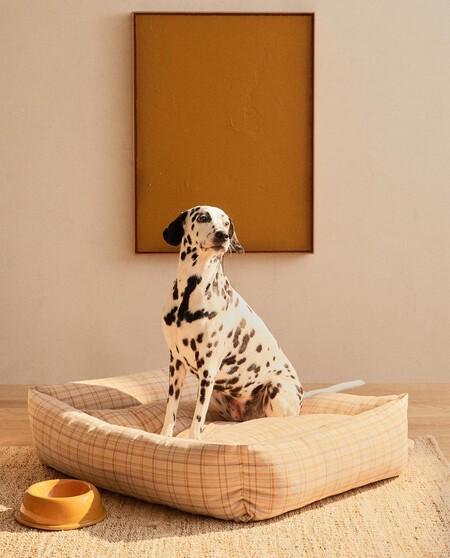 Zara Home Mascotas 3