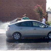 Mosquitos y pájaros, enemigos públicos contra la pintura de tu coche