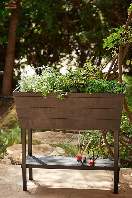 Mini Huerto En Casa Urban Bloomer Con Base Para Cultivo