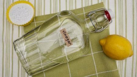 Lemon Vinegar Baking Soda Shutterstock Primary