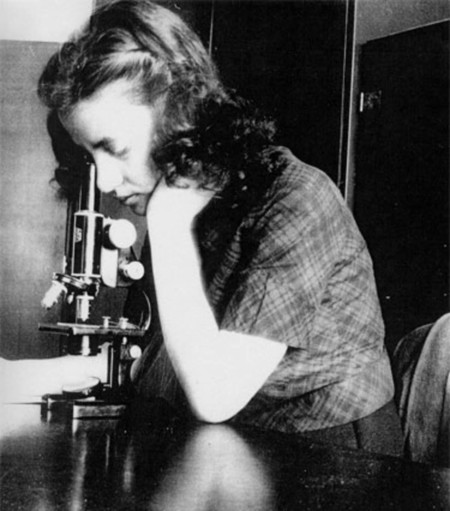 Fwis Loreal Esther Lederberg One Of The Great Pioneers In Bacterial Genetics 377