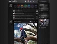 Truco Express: Cambia el diseño de Flickr. Instagram Web o Tumblr con userstyles.org