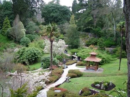 Jardín japonés Powerscourt