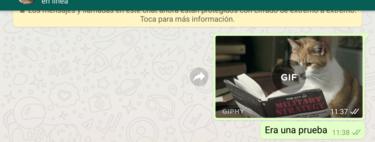 Cómo grabar un vídeo y enviarlo como GIF convirtiéndolo directamente en WhatsApp