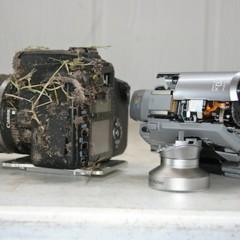 Foto 2 de 5 de la galería una-canon-eos-350d-que-sobrevive-a-una-caida-de-900-metros en Xataka Foto