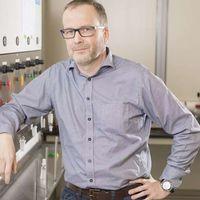 Un paso más cerca del desarrollo de las primeras baterías orgánicas