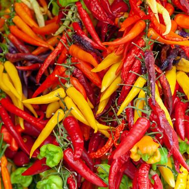 11 chiles, ajíes, pimientos y guindillas para hacer más picantes tus platos: cómo distinguirlos, cómo usarlos y cómo rectificar